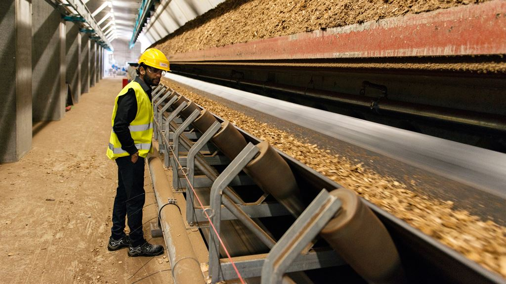 Wood chips on conveyor belt